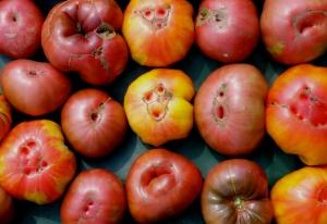 Heriloom Tomatoes 3
